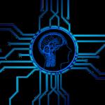 「電脳せどり」とは何か?わかりやすく解説【せどりと電脳せどりの違いとは?】